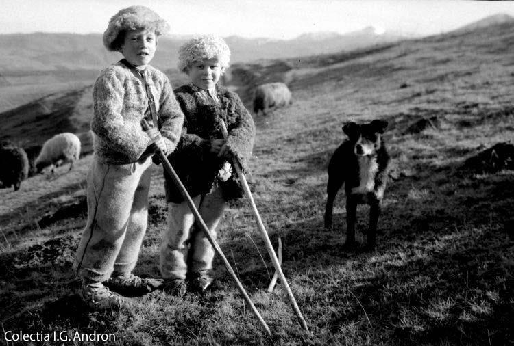 Ciobanasi-pe-Vârful-Pietrișului-Satul-Rasca-1935