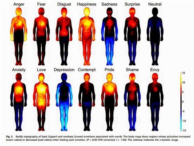 Harta corporala a emotiilor